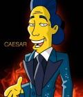 """Caesar simpsons 120x140 Tésseras da Semana: Casamentos, US$ 181,8 mi de bilheteria doméstica e """"House at the End of the Street"""""""